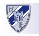 Nygaards Bataljon sin internettside med nytt design